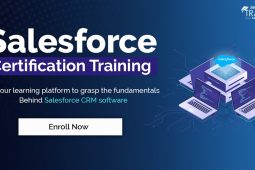 Upcoming Salesforce Training Batches By JanBask Training