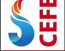 Shanghai International Emergency & Fire Safety Expo (CEFE Powered by INTERSCHUTZ)
