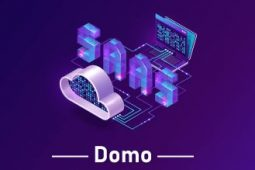 Domo Online Training with Experts – Free Demo