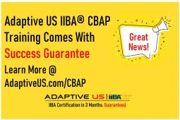 CBAP Training – 100% Success or 100% Refund – 400+ CBAPs – Live Online Weekend – USA, Canada, Europe